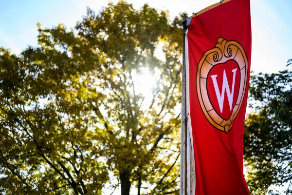 The sun peaks through some trees behind a banner with the University of Wisconsin–Madison crest on it